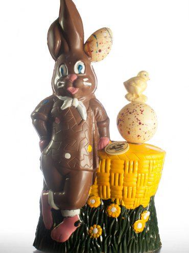 Cioccolato (coniglio)