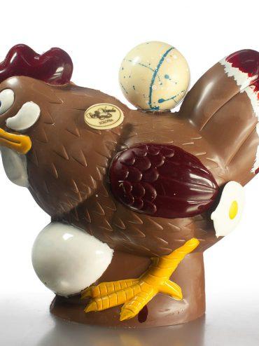 Cioccolato (gallina)